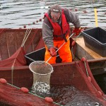 fishing karelia summer
