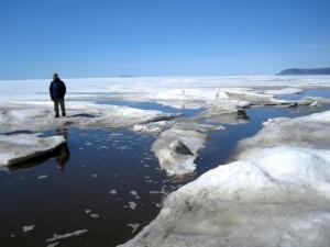 Bering Straight Sea Ice, 2010.