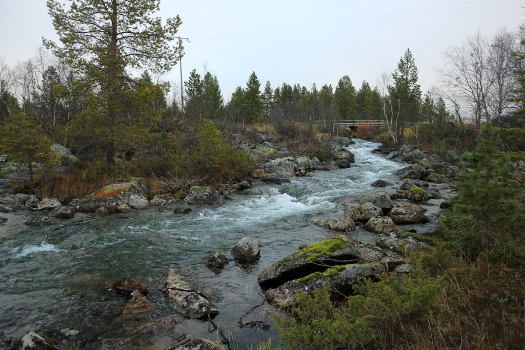 River Kirakkajoki is the site of the 2017 restoration efforts.