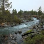 River Kirakkajoki is the site of the 2017 restoration efforts.
