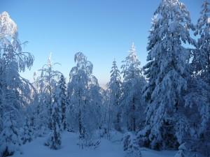 winter5