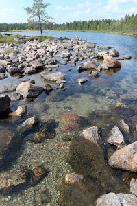 New spawning areas for trout and grayling on the Sámi sites