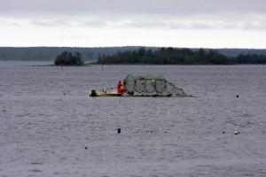 Fishtrap out in the Perämeri