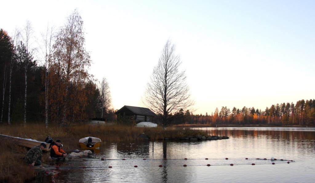 Koitajoki river seiners