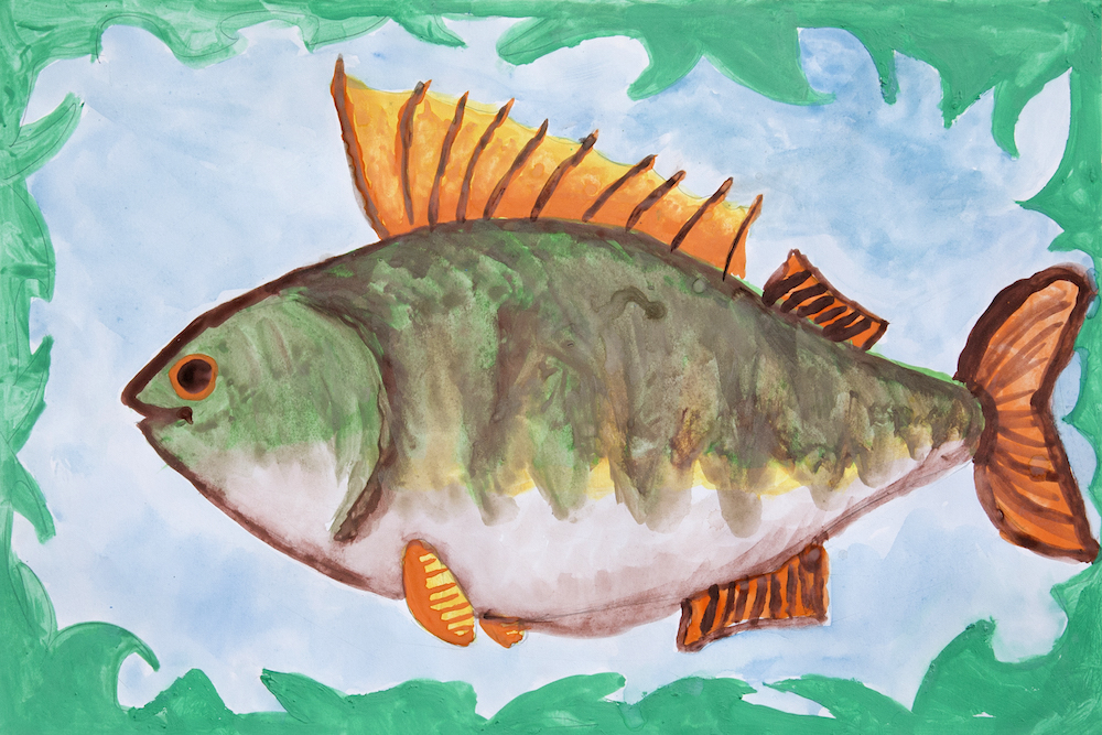 "Children in the wilderness villages painted the ""Future of Ponoi"", such as this yellow perch in a clean and healthy water."