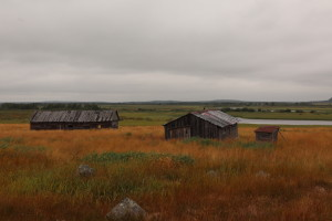 Oral history interviews and community-based monitoring was extended to extremely remote wilderness communities such as Chalme-Varre, a seasonal settlement on Ponoi.