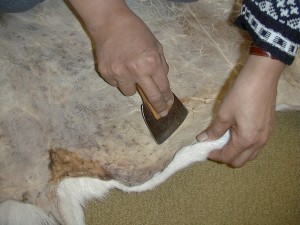 Leah working on the caribou skin - a clip from the online exhibition.