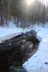 River Jukajoki in early April.