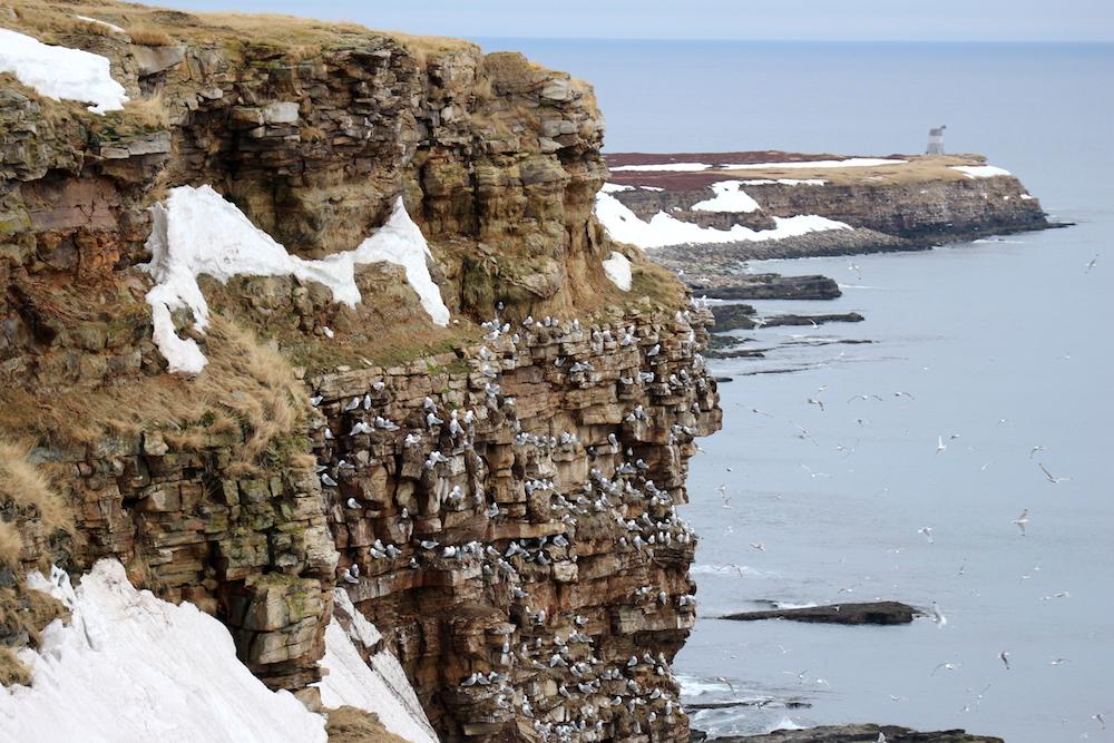 Coastal fjords are a Sámi socio-ecological system. Näätämö is the interface between the Barents Sea and Skolt Sami lands.