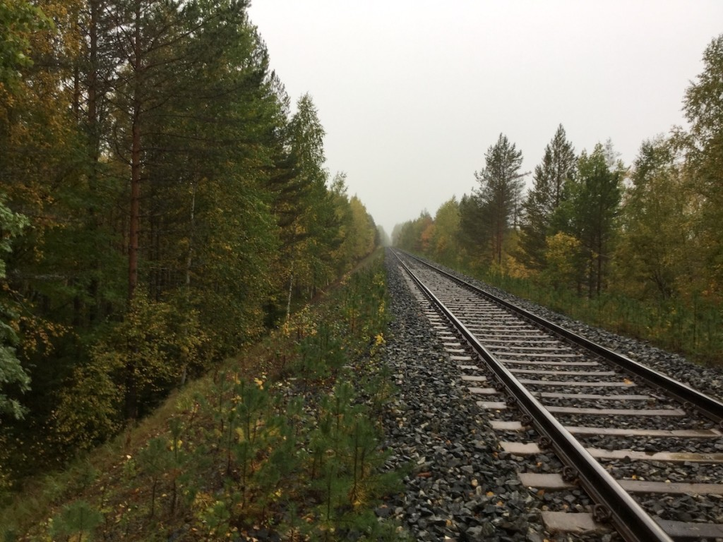 A northern railway in the Barents region. Snowchange, 2018.