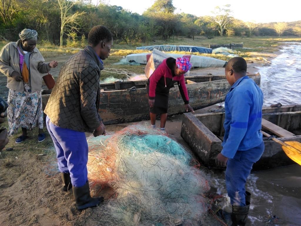 Preparing gill nets.