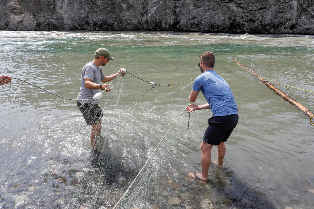 Checking the nets on Stikine. Photo: Mika Honkalinna