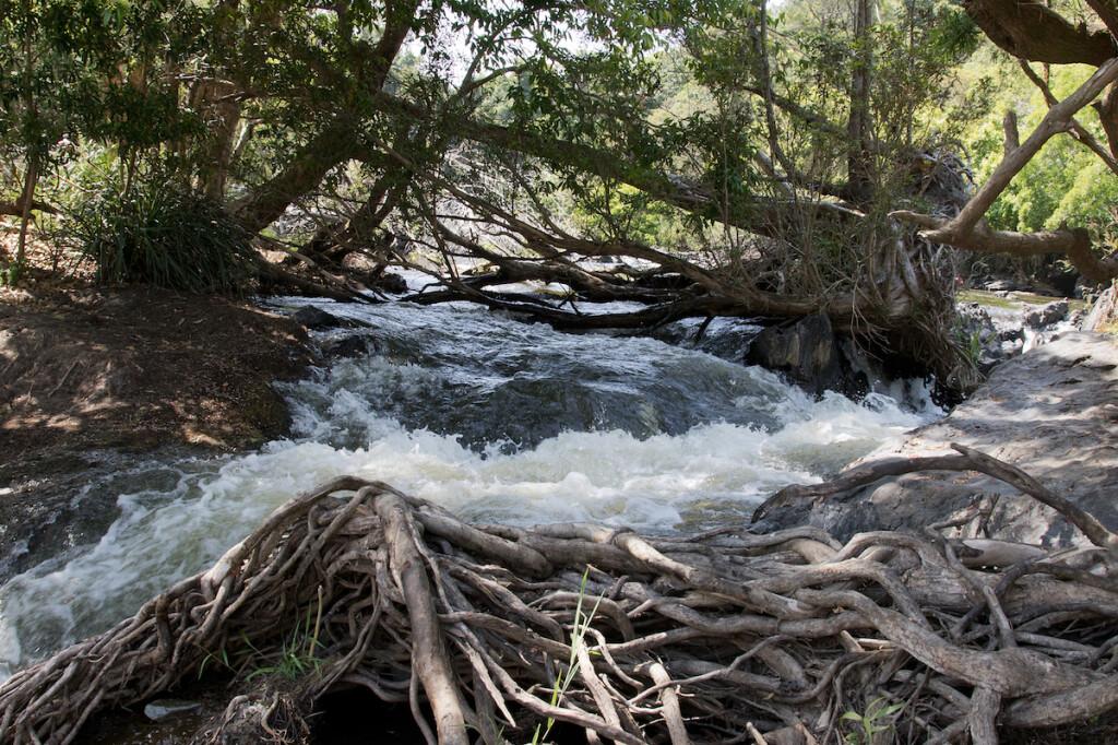Barron River Falls, QLD