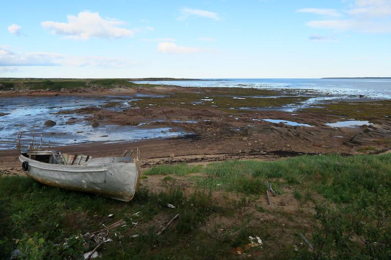 Sea coast of Sosnovka, 2020