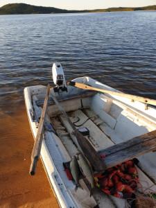 Control fisheries for whitefish, lake Kirakkajärvi.